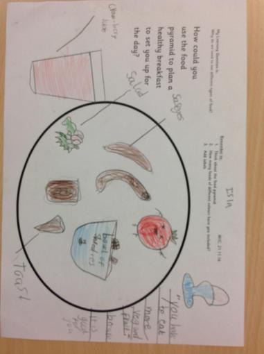 Science  - food groups