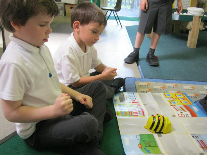 Investigating Bee-Bots