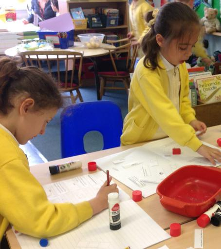 Learning about shape