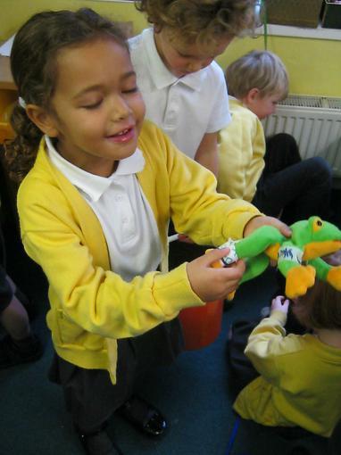 Bandaging frogs!