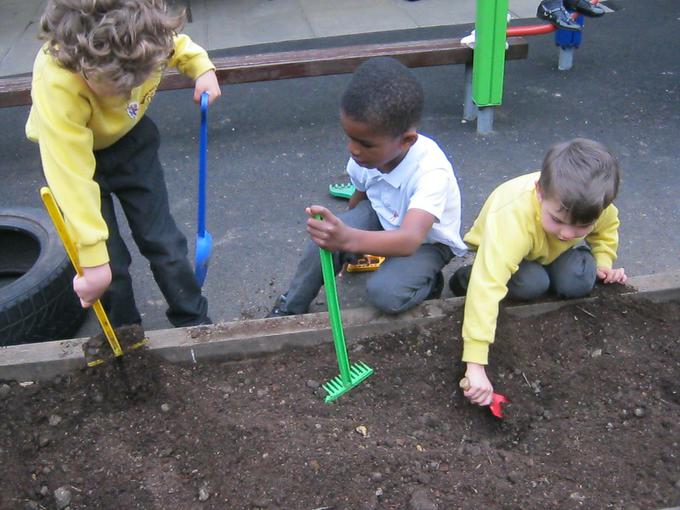 raking the soil