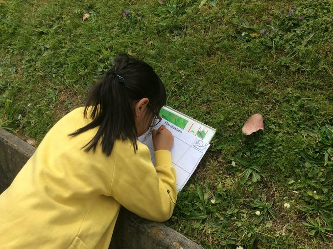 Searching for microhabitats