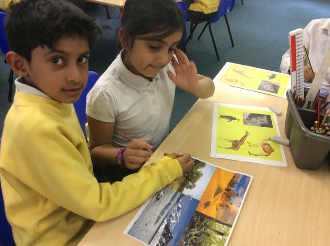 What makes the animal suited to its habitat?