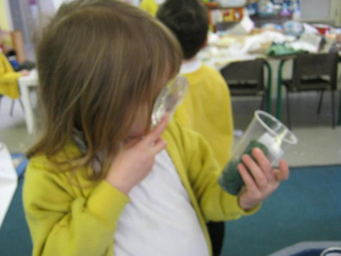 Investigating our seeds