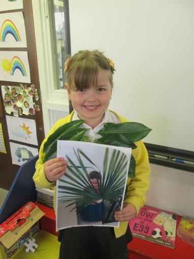 Fantastic home learning about leaves