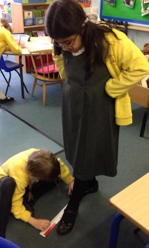 Measuring and comparing length