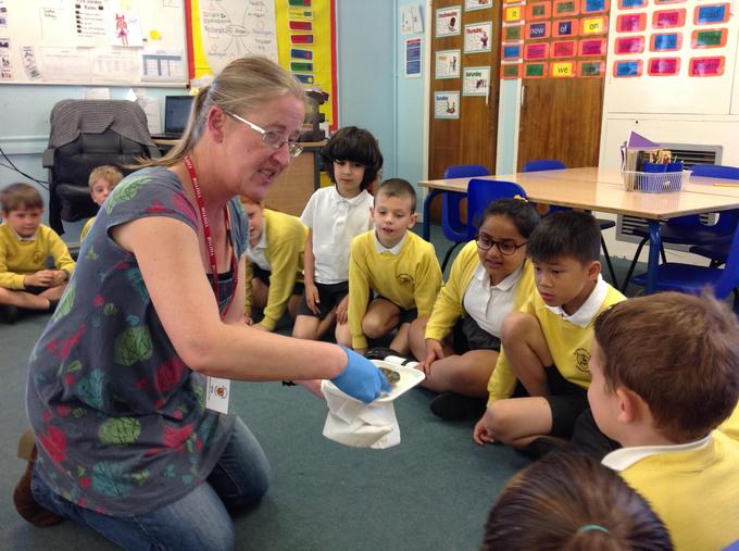 Visit from a marine biologist