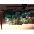 Year 5's Pets in a Jar