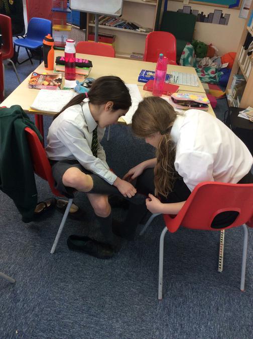 Investigating measurements.