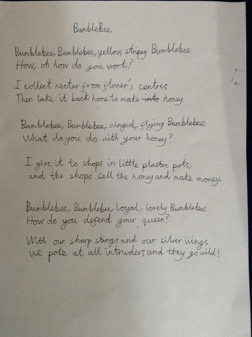 A poem inspired by our guided reading session
