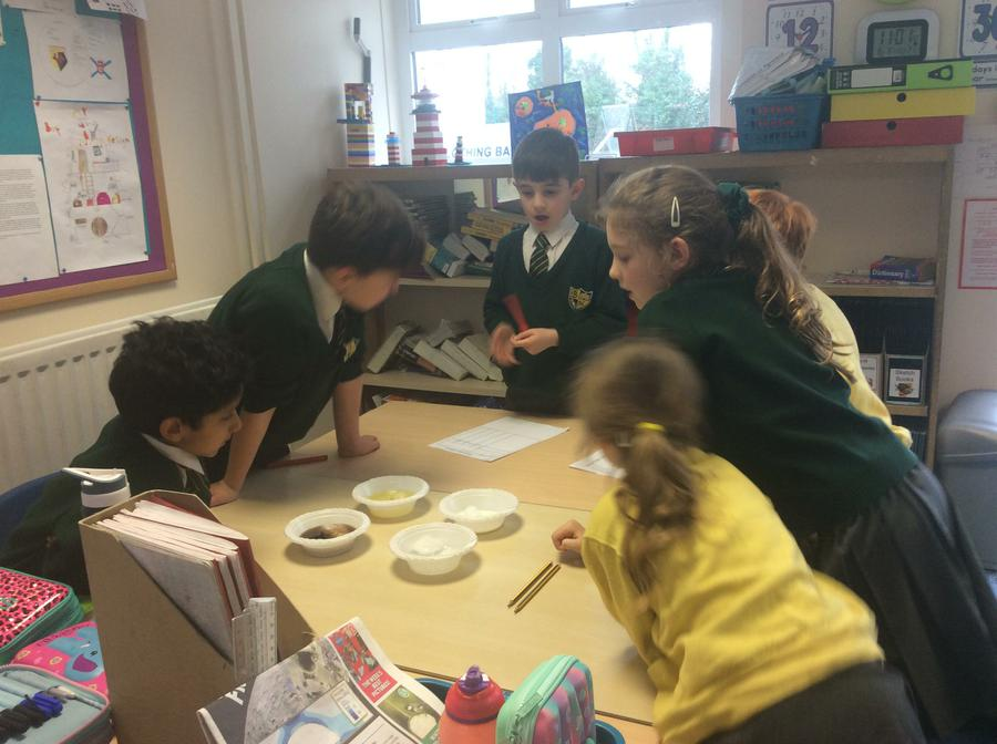 Year 1 and Year 4 Science Investigation