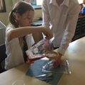 Extracting a strawberry's DNA
