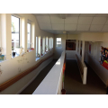 Ramp and corridor to Year 5 and Year 6