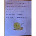 A Lumen challenge poem.