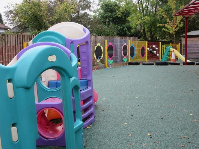 F1 Playground