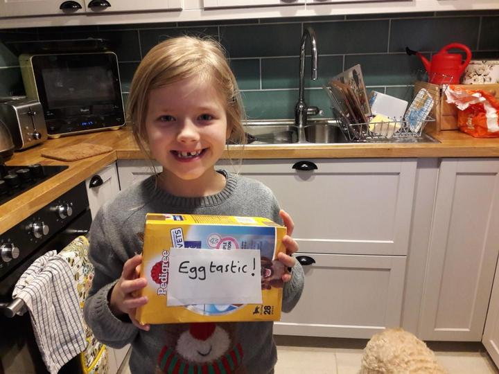 Egg Drop Investigation