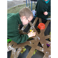 We used tweezers to pick up autumn objects