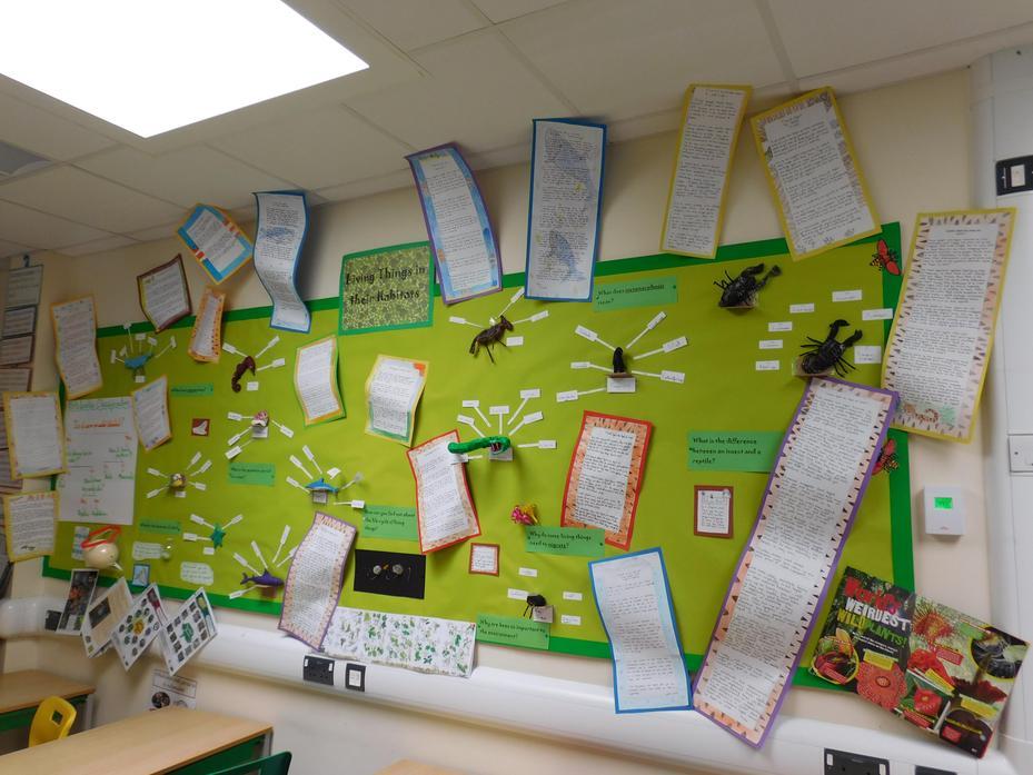 class display