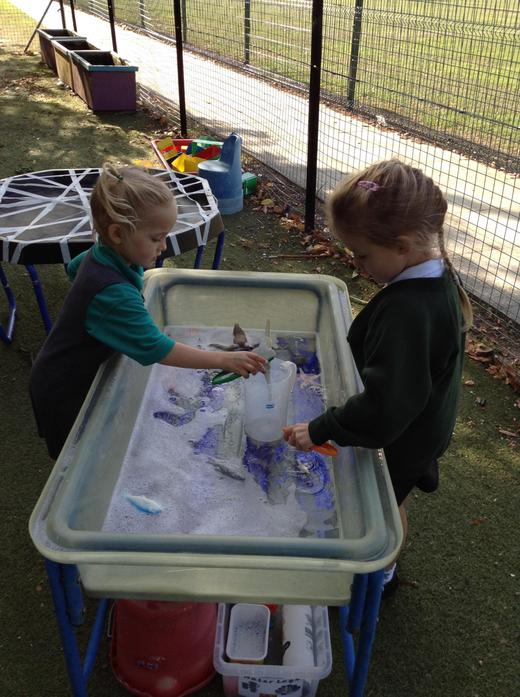 Rescuing sea creatures/ water play