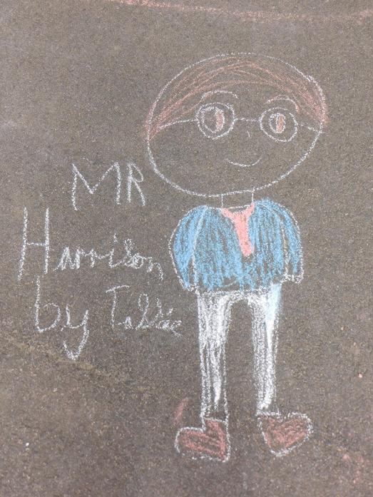Mr Harrison by Tassie