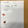 """""""We have been writing about poppies."""""""
