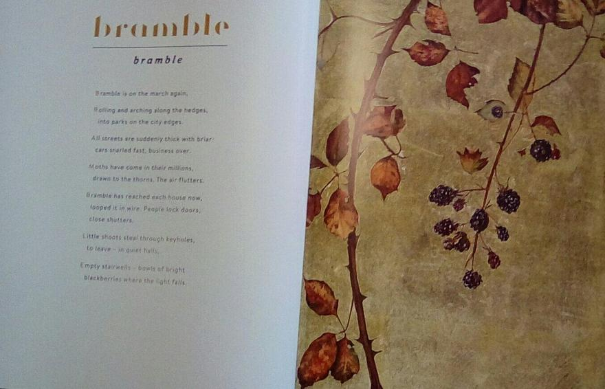 'The Lost Words' - reading the 'Bramble' 'spell'