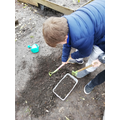 collecting soil