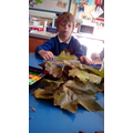 How many leaves did we find?