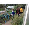 exploring the vegetable plot