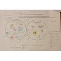 Lovely diagrams Kiran - really impressive