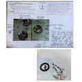 Amelia's fantastic description - with picture!