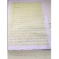 Ayla's impressive diary - great vocabulary