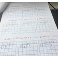 Ayla's Maths
