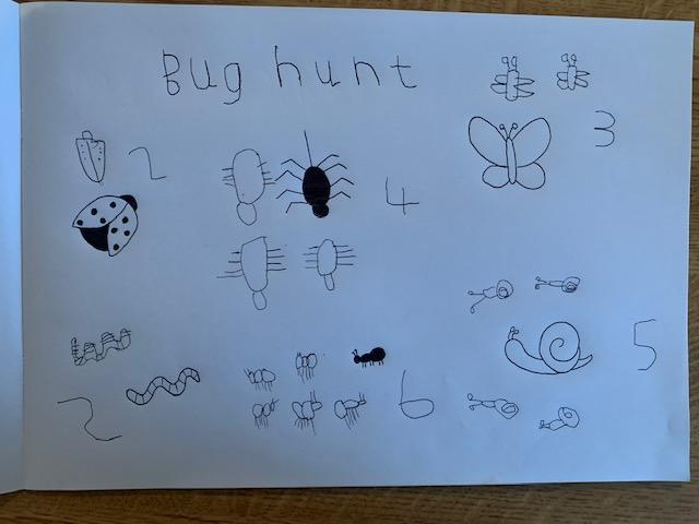 Shipmate Freddie has been on a bug hunt!