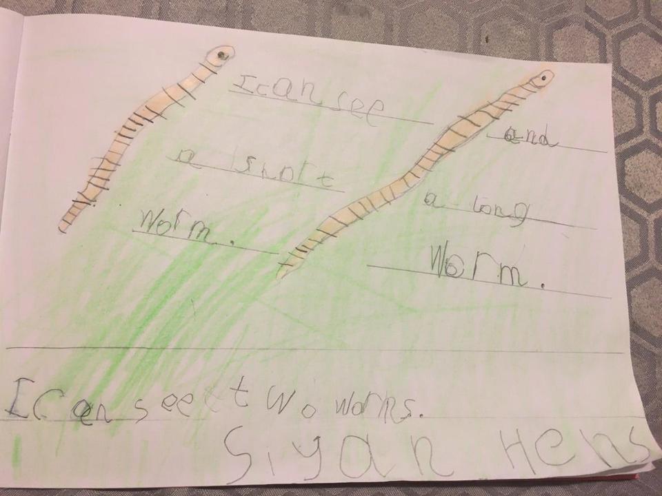 Siyan's wonderful worm writing!