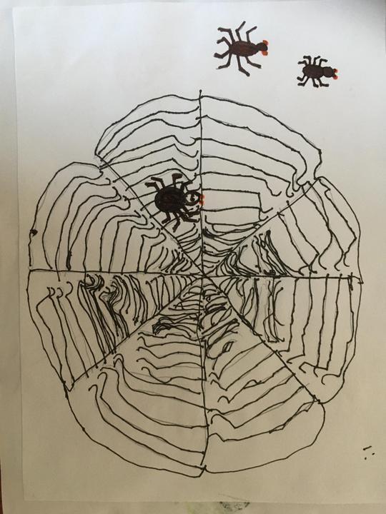 Ayushi's fantastic spider web