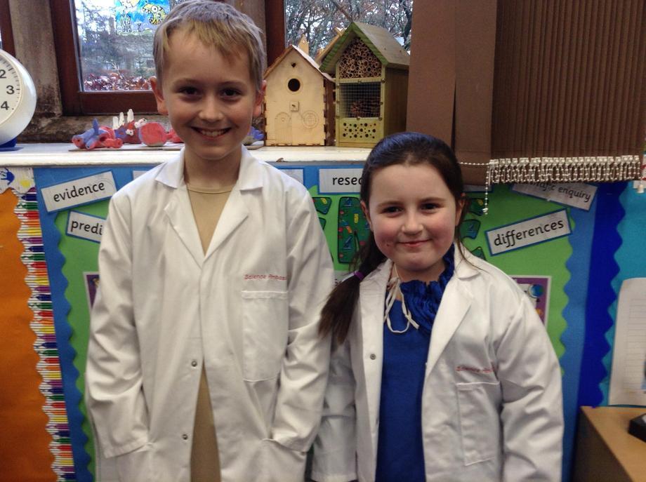 Willow class ambassadors