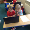 Researching marine animals