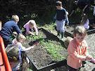 Class 1 Garden