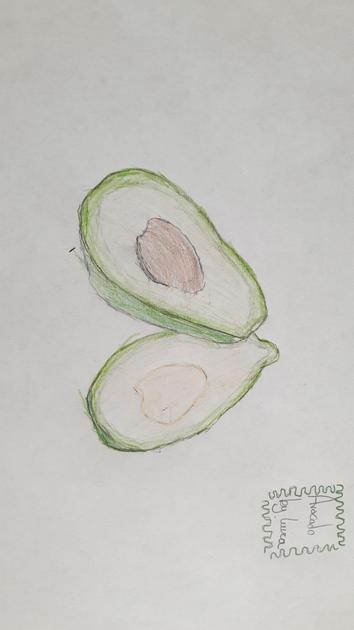 Avocado by Luiza!