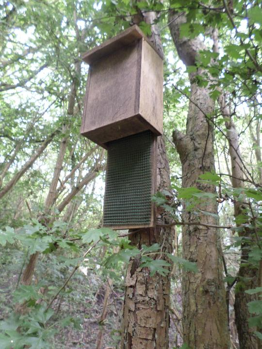 This is a Bat House.