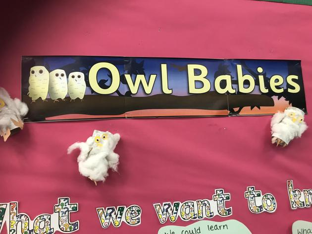 The topic for this half term is Owl Babies for Chadwick class!