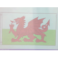 We copied the Welsh Flag