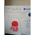 Atlantic Ocean Fact File Year 6