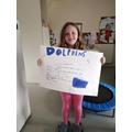 Yr 4 - Brilliant Dolphin Report