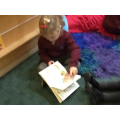 Reading an informatin book about weather