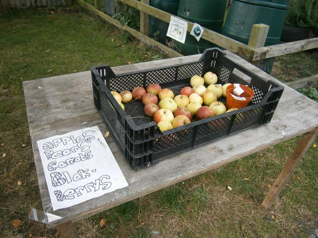Selling our Fruit from the Orchard