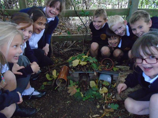 Eco Class Time with 3D building Bug Hotels