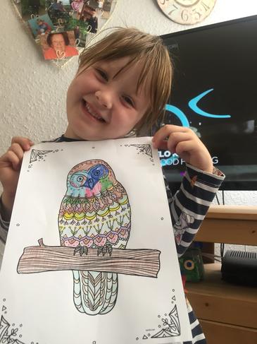 Colouring an owl