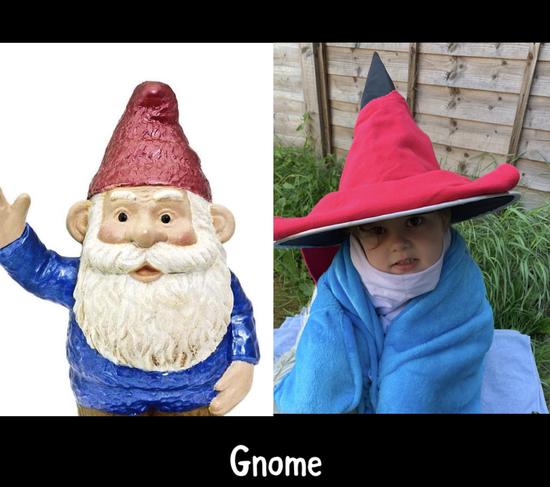 I am a gnome in Devon!